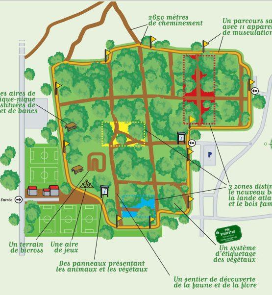 Bois du Burck à Mérignac près de Bordeaux