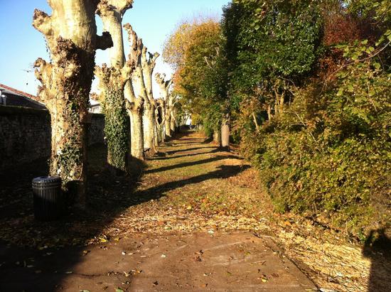 Le jardin des remparts à Bordeaux, lieu insolite de la ville