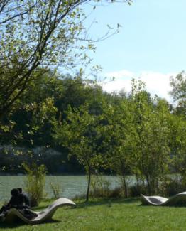 Une faune et une flore exceptionnelle au parc de l'Ermitage Sainte Catherine à Bordeaux